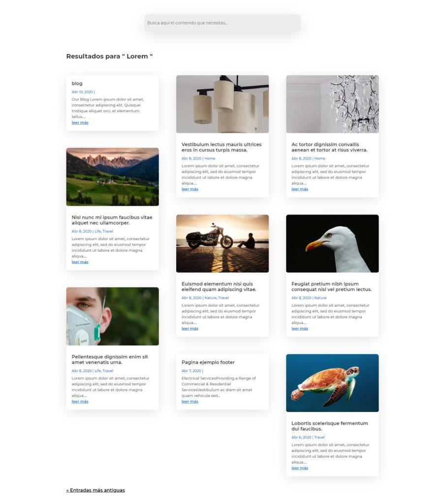 Crear página de resultados de búsqueda personalizada con Divi
